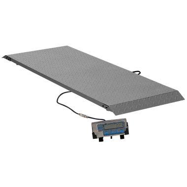 Warehouse Platform Scales